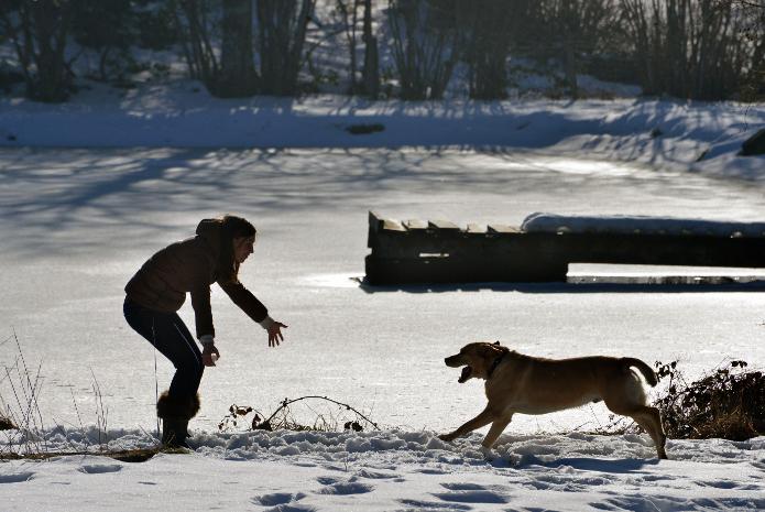 L'Etang en hiver