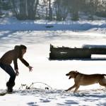 L'Etang sous la neige