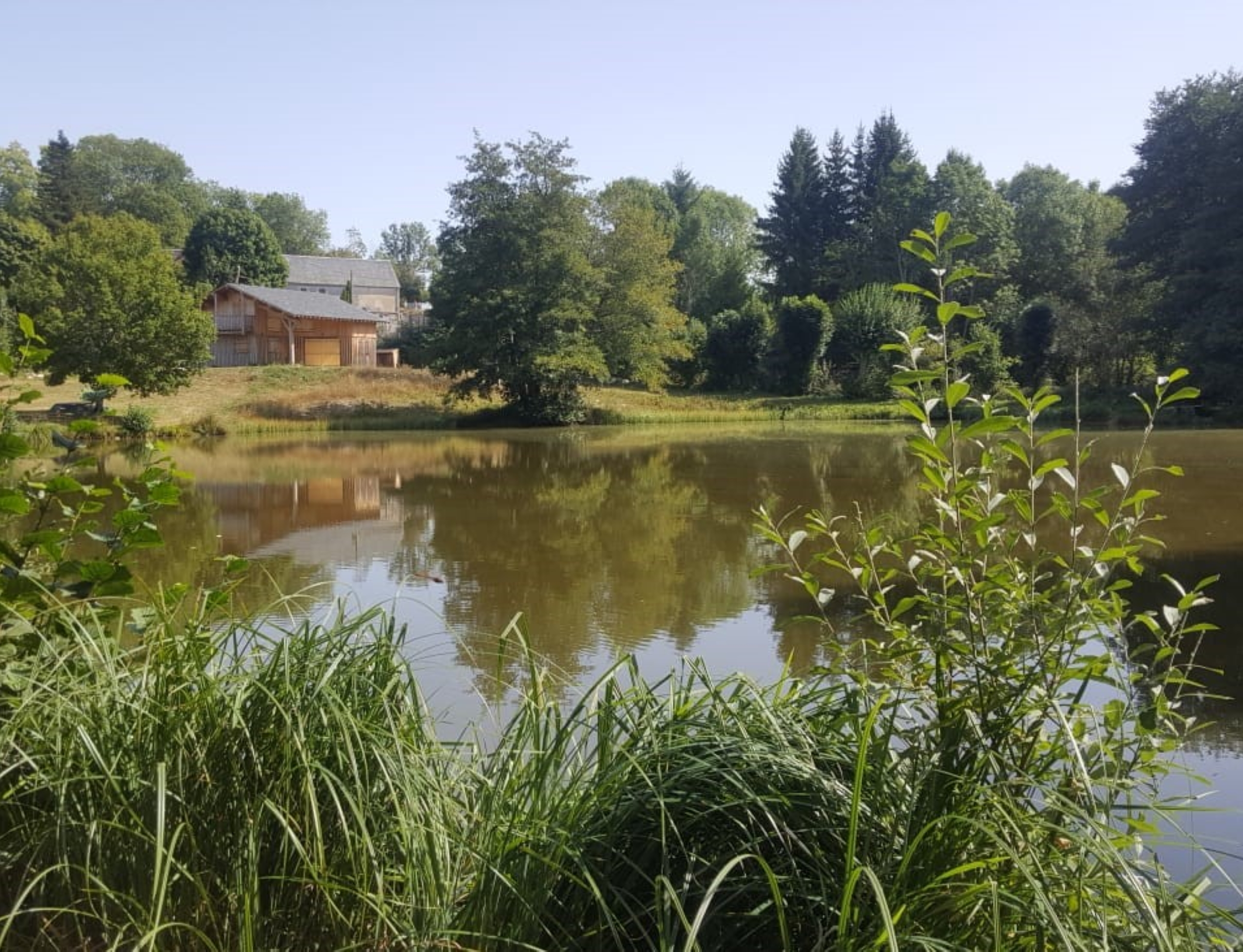 Calme et Immersion pleine nature